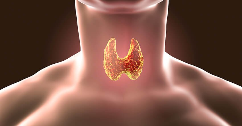 Hypothyroidism-common disorder